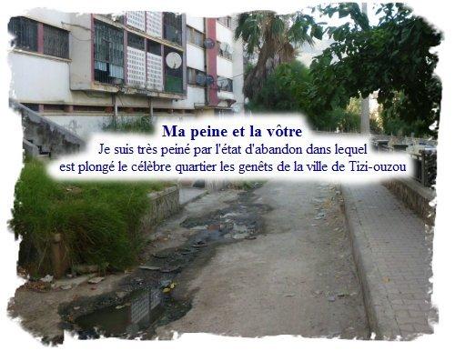 19juillet_Les_Genets
